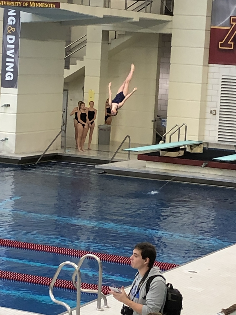VanBeck high in the air on her dive at State True meet.