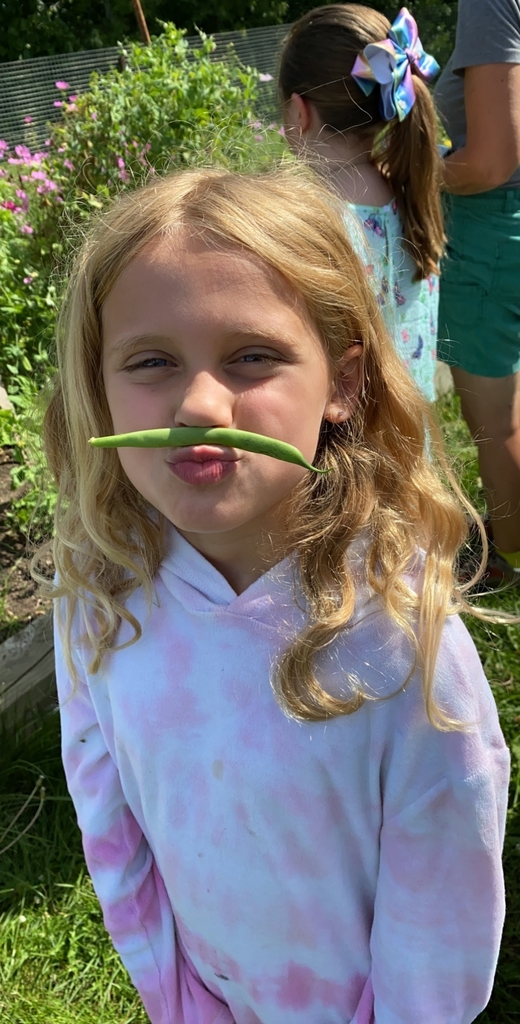 I mustache you a question! Do you like green beans?